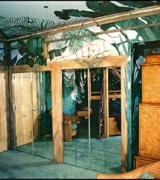 Jungle Guest Bedroom Mural view 3
