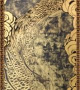 Male Golden Peacock